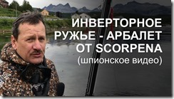 инвертер от Scorpena